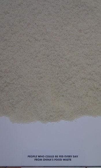 Rice Show China