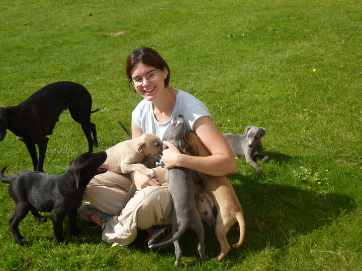 Gill with dogs
