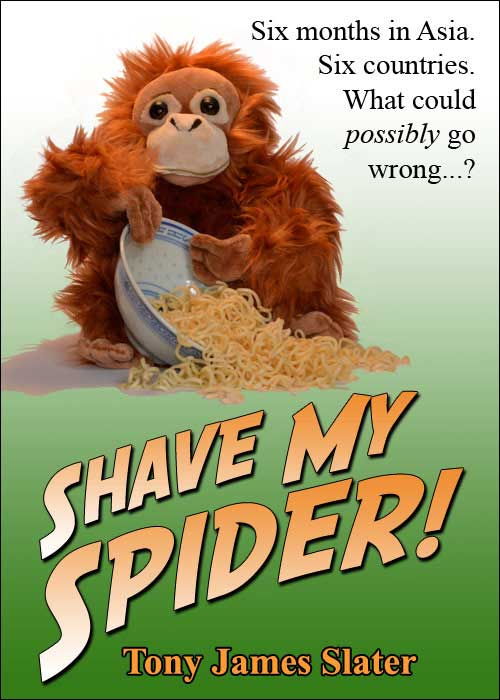 Shave My Spider Cover